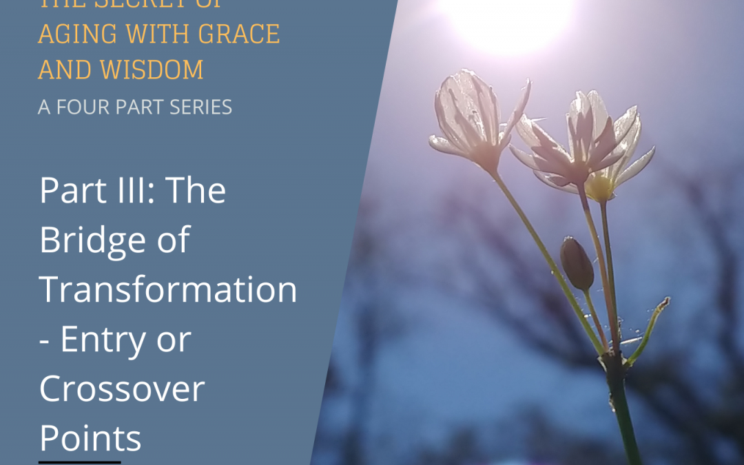 Part III: The Bridge of Transformation – Entry or Crossover Points