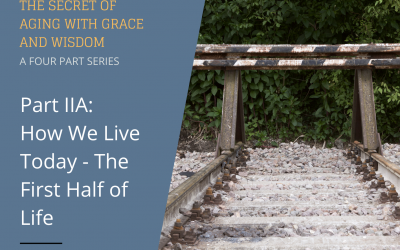 The Secret of Aging With Grace and Wisdom – Part IIA